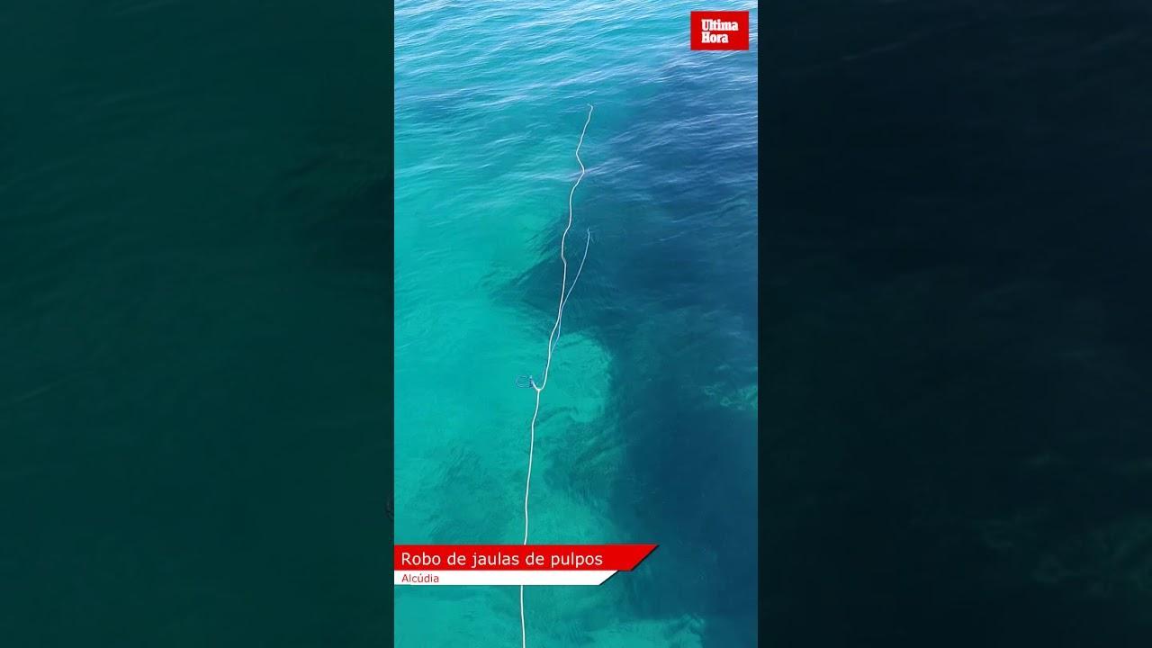 Fishermen robbed in Alcudia