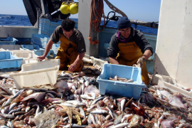Balearic fishing industry rejects 15% reduction in fishing days