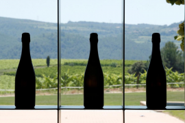 Spain's cava takes milder pandemic punch than expected