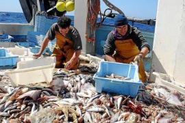 Trawler fishing hours cut in the Balearic Islands