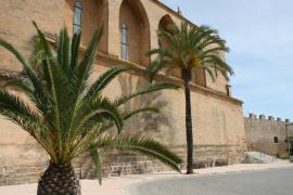 Coronavirus cases increase in 36 Mallorca municipalities