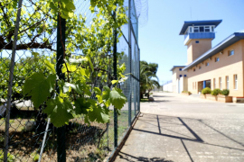 Arrests for selling drugs to inmates at Palma prison