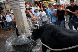 PSOE in Fornalutx outraged at probable bull-run ban