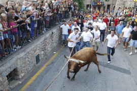 Council of Majorca rejects Fornalutx bull-run exemption