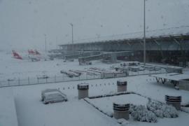 Palma flights cancelled