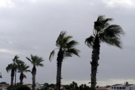 Mallorca Weather Forecast for Friday