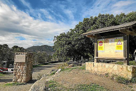 Forest recreational area, Mallorca