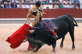 Parliament takes first step towards bullfighting ban