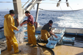 Approval for fishing tourism in the Balearics given