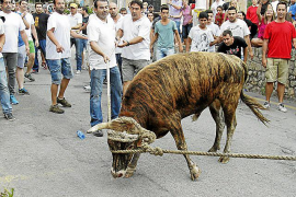 Fornalutx demonstrating against bull-run ban