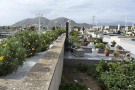 The strange case of the Alcudia cemetery thefts