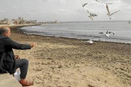 Palma Beach Concessionaires issue ultimatum