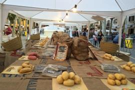 Best all-rounder of potato world