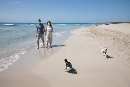 Useless, pitiful: the masks on beaches debacle