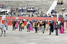 Madrid company signs five-year deal to stage bullfights in Inca