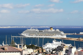Mallorca tour guides wanting Canaries help in reactivating cruise tourism