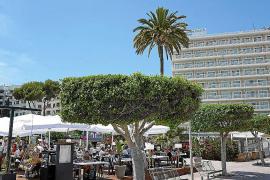 Terrace in Mallorca