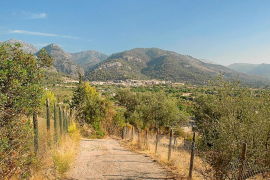 Old road for hiking in Selva, Mallorca