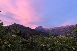 Spotlight on Soller: Let's bring the party to Soller