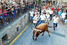 Armengol on the spot over Fornalutx bull-run ban