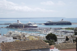 Environmentalists call protest against cruise ships