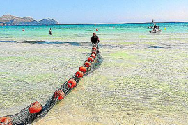 Anti-jellyfish project being tested in Playa de Muro