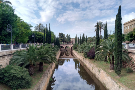 Viewpoint: All is not well in Palma