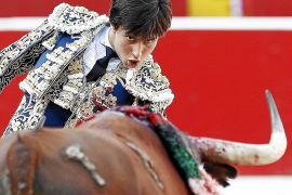 Government will ignore Madrid's warning on bullfighting ban