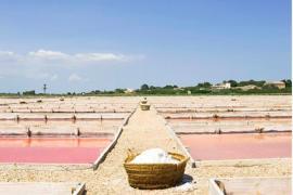 Council of Mallorca seeks artisan status for salt professionals
