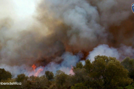 Wave of forest fires in Majorca