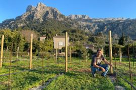Humans of Mallorca met Tommy Carter – Winemaker of the Soller Valley