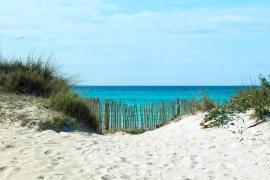 Mallorca Weather Forecast for August 20