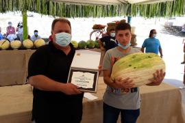 Record-breaking melon takes Vilafranca first prize