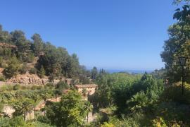 Spotlight on Soller: Setting the pace for the Autumn of 2021