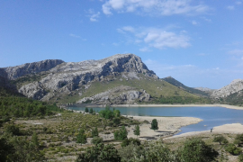27 municipalities in Majorca now on drought alert
