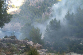 Cala Tuent fire now under control