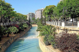 Green corridor for temperature reduction in Palma