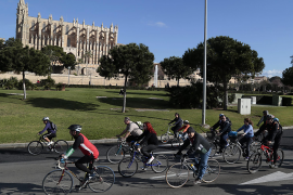 Insurance and points system being advocated for cyclists
