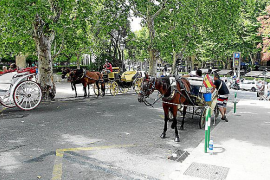 Horse carriages' stop will be moved from Palma's Conqueridor