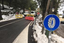 Snow, saturation, TripAdvisor sanction: the week in Majorca