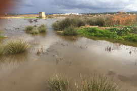 """Farmers accuse government of """"having a laugh"""" over flood aid"""