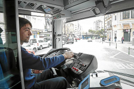 Ninety-five new buses for Palma