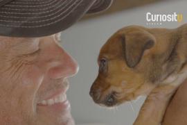 Cinematographer Uses Drones To Rescue Animals Around The World | Douglas Thron | Doug To The Resc…