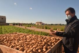 What are the best potatoes you have ever tasted?