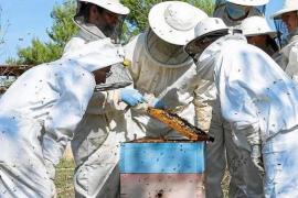 Rafael Llinàs teaching adults about bees.