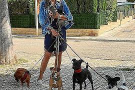 Virginia Louise walking dogs.